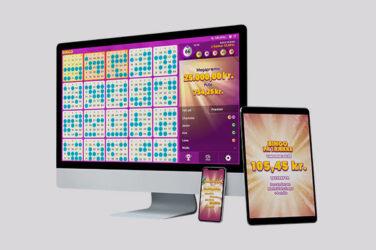 Vil du spille online bingo? Læs vores introduktion først